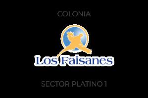 Los Faisanes Sector Platino