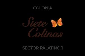 Siete Colinas Palatino